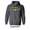 BASKETBALL CANTON HOODED SWEATSHIRT