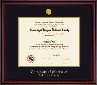 FRAMING SUCCESS CLASSIC DIPLOMA FRAME WITH MEDALLION
