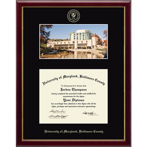 Image For CHURCH HILL GALLERIA DIPLOMA FRAME EMBOSSED W/ LIBRARY